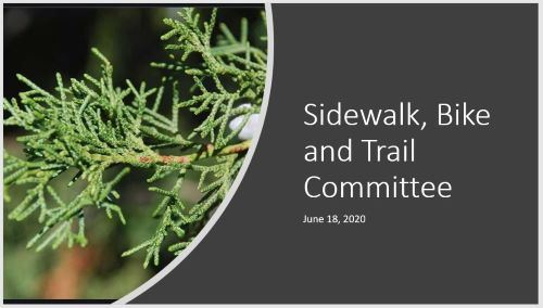 SBT Committee Powerpoint June Meeting